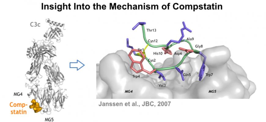 Comp mechanism 1